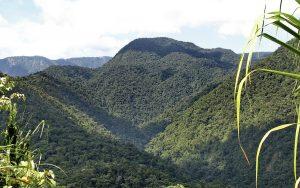 Parque Nacional Braulio Carrillo